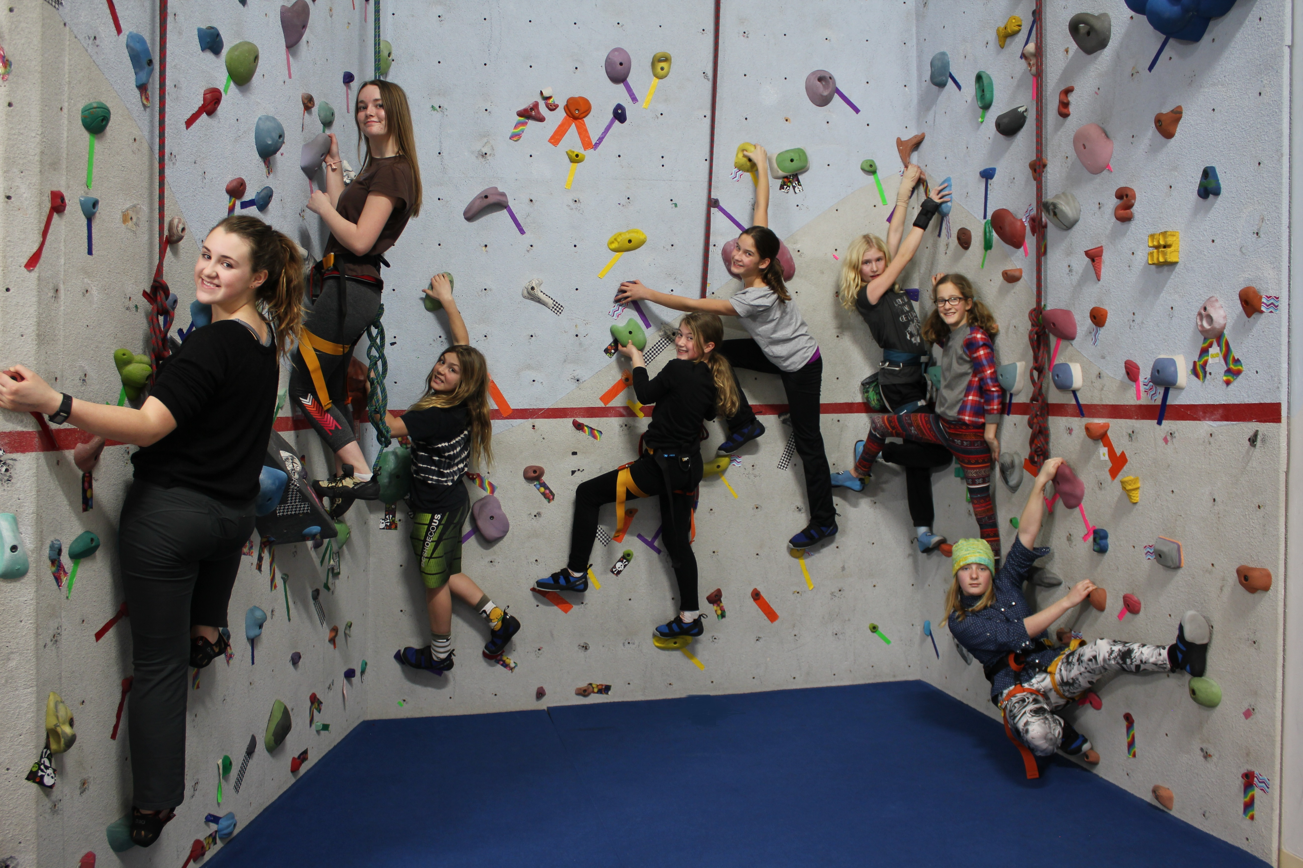 Vertical Climbing Club